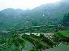 慎提蓝藻产业化及国外治理水华的成功做法